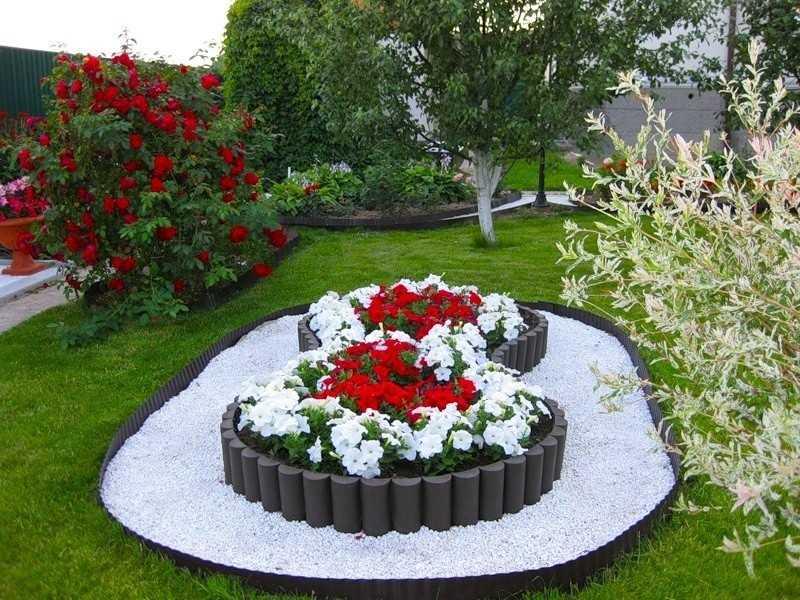 Фото цветников своими руками на даче фото цветущее всё лето