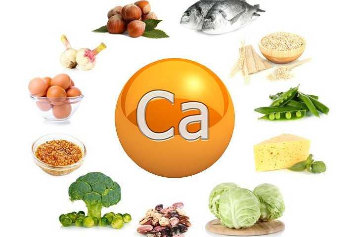 Узнайте какие продукты содержат большое количество кальция