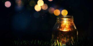 теплая ночь фото
