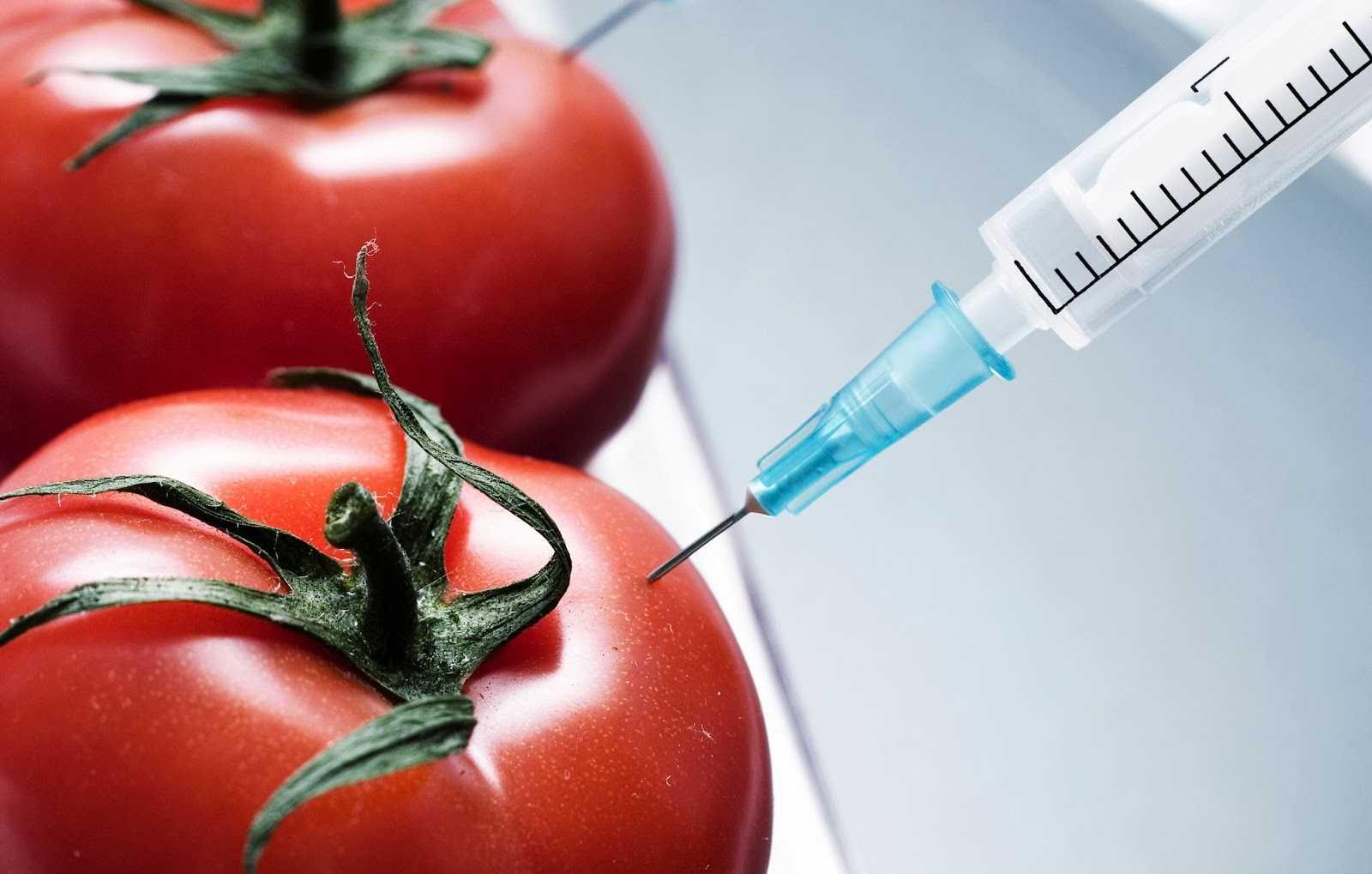 Как выбрать продукт без ГМО?