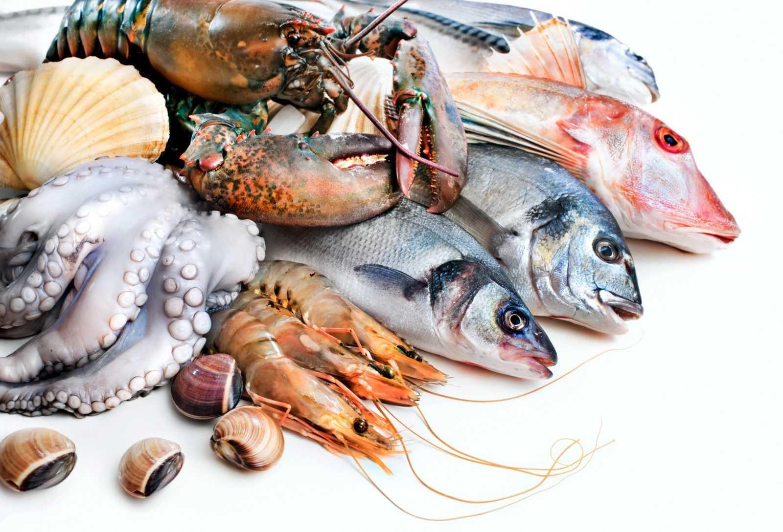 Вместе с морепродуктами мы употребляем пластик