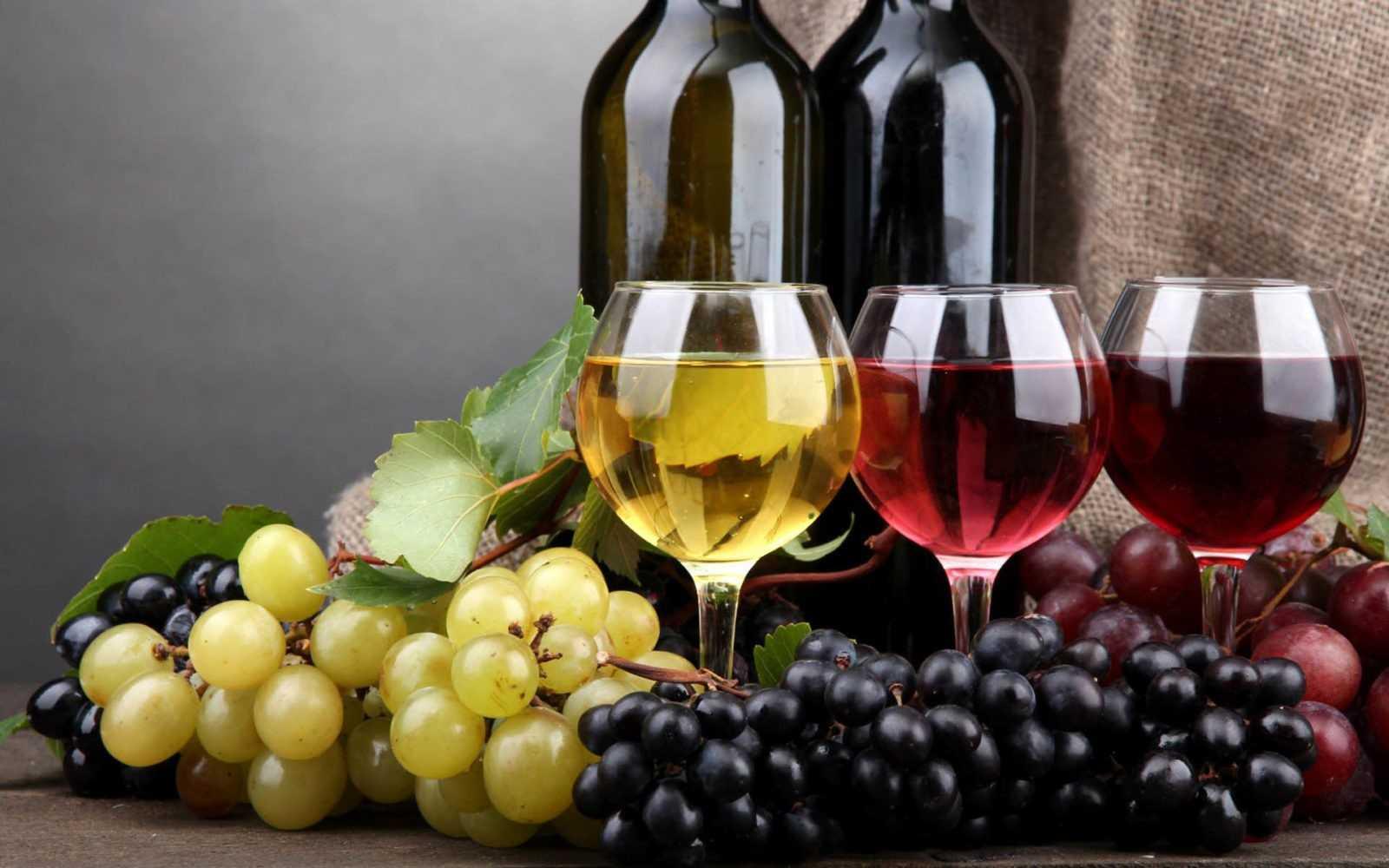 Как аматоры производят вино в Украине: секреты виноделов-