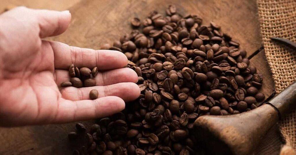 Особенности приготовления кофе арабика